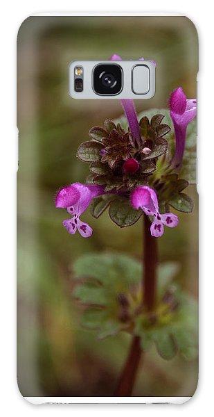 Wild Henbit Flower Loganville Georgia Galaxy Case