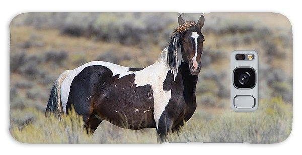 Wild Horse 14 Galaxy Case