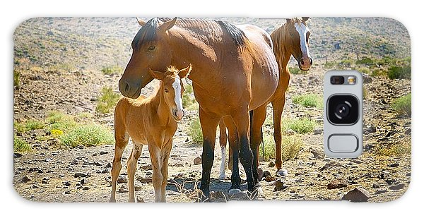 Wild Horse Family Galaxy Case