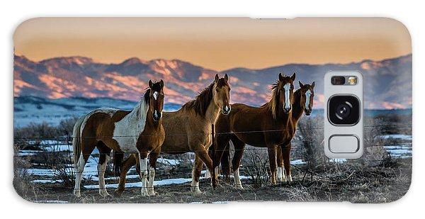 Wild Horse Group Galaxy Case