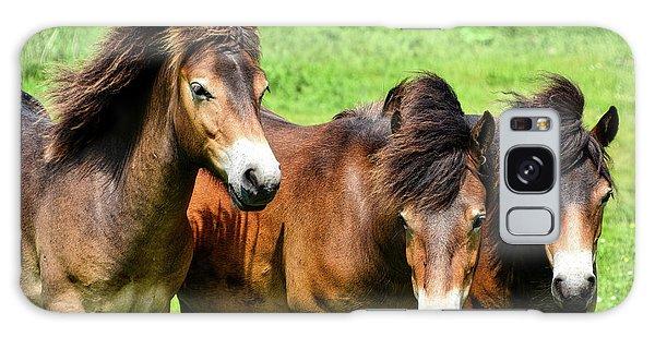 Wild Horses 2 Galaxy Case