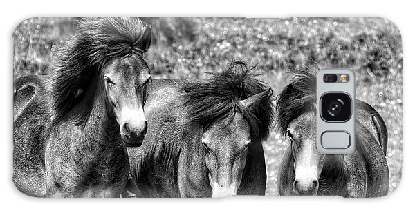 Wild Horses Bw1 Galaxy Case