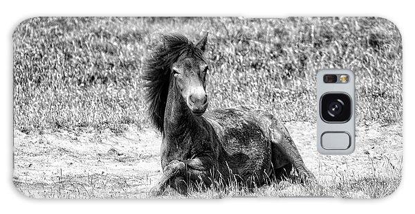 Wild Horses Bw3 Galaxy Case