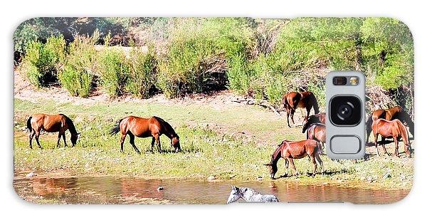 Wild Horses Grazing At Waterhole  Galaxy Case