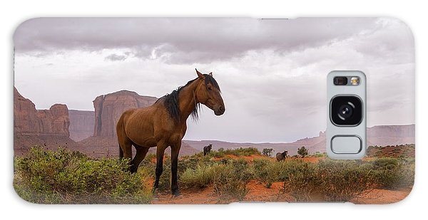 Wild Horses Of Monument Valley Galaxy Case