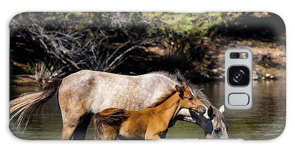 Wild Horses On The Salt River Galaxy Case