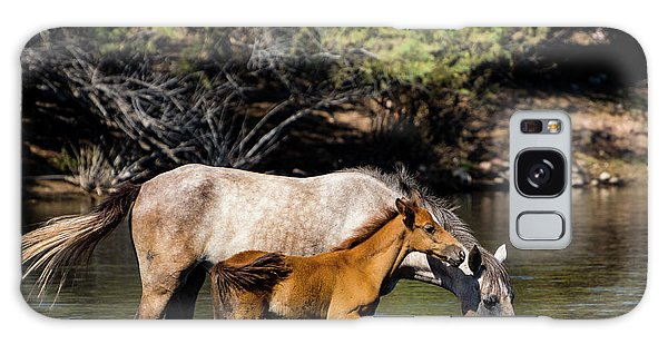Wild Horses On The Salt River Galaxy Case