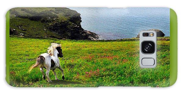Wild Little Pony Galaxy Case