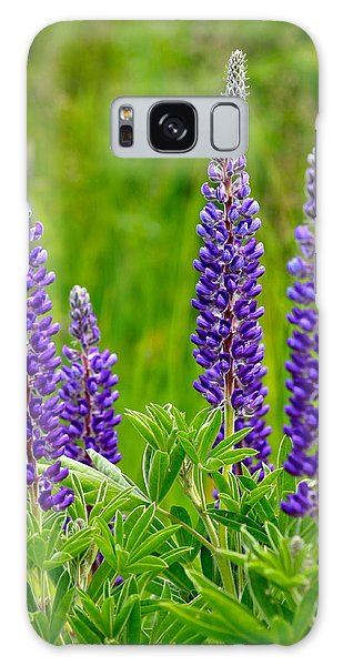 Wild Lupine Galaxy Case by Karon Melillo DeVega