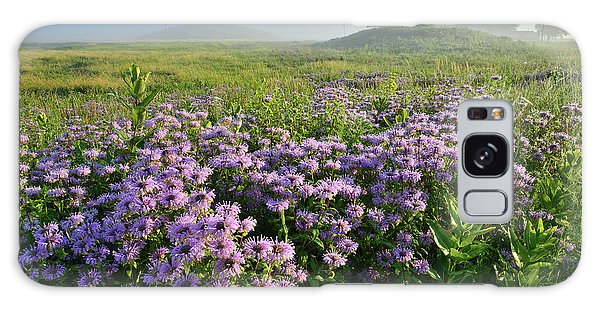 Wild Mints Galore In Glacial Park Galaxy Case