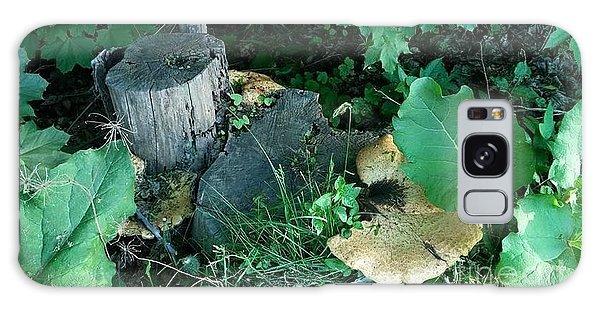 Wild Mushroom Galaxy Case