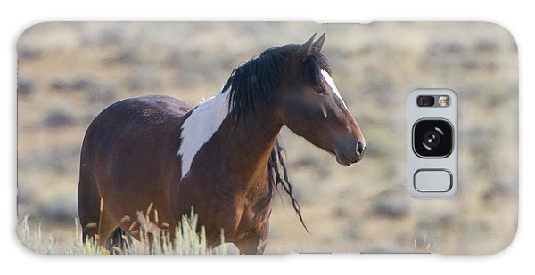 Wild Mustang 1 Galaxy Case
