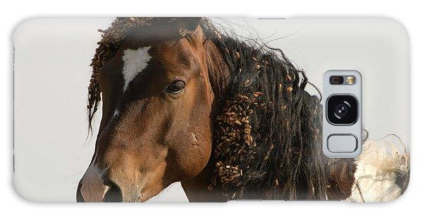 Wild Mustang 12 Galaxy Case