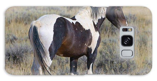 Wild Mustang 6 Galaxy Case
