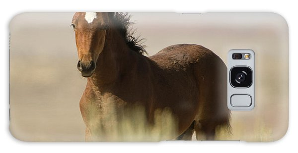 Wild Mustang Colt Galaxy Case