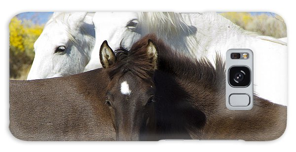 Wild Mustang Herd Galaxy Case