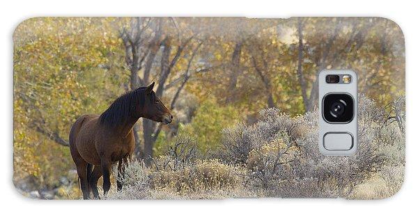 Wild Mustang Horse Galaxy Case