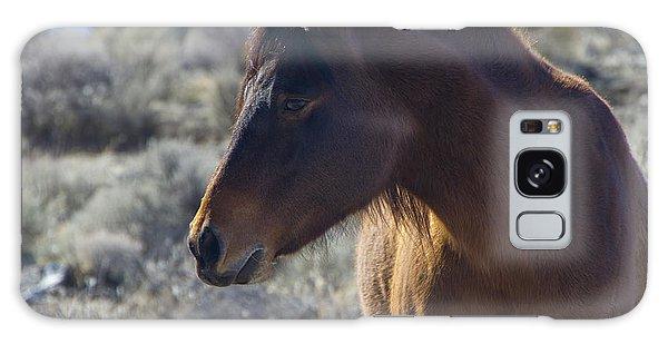 Wild Mustang Mare Galaxy Case