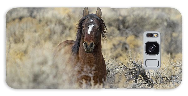 Wild Mustang Stallion Galaxy Case