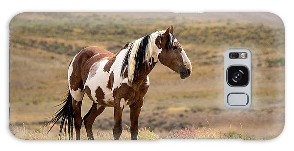 Wild Mustang Stallion Picasso Of Sand Wash Basin Galaxy Case