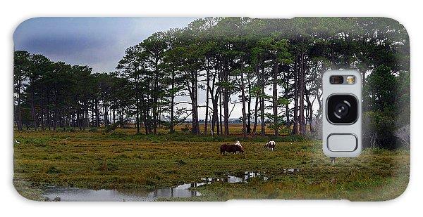 Wild Ponies Of Assateague Galaxy Case by Lori Tambakis