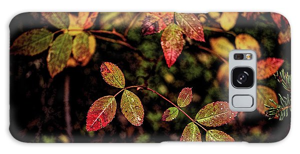 Galaxy Case featuring the photograph Wild Rose Colors by Fred Denner