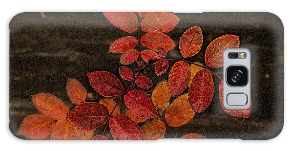 Galaxy Case featuring the photograph Wild Rose Leaves by Fred Denner