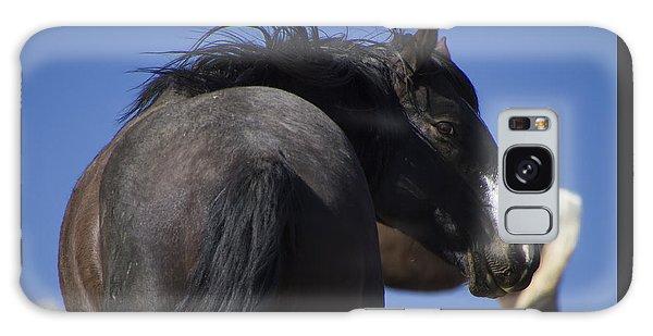 Wild Stallion  Galaxy Case