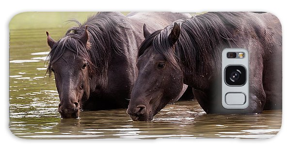 Wild Stallions At The Water Hole Galaxy Case