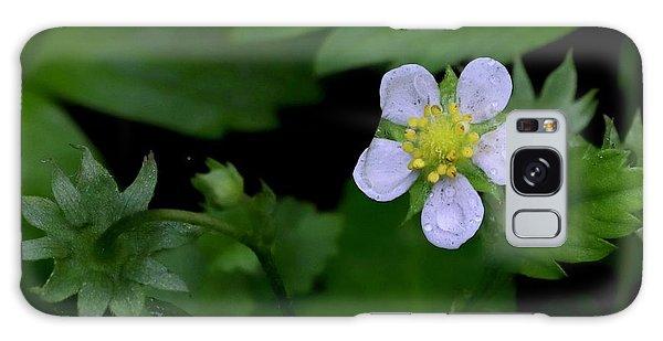 Wild Strawberry Blossom And Raindriops Galaxy Case