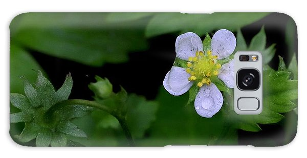 Wild Strawberry Blossom And Raindriops Galaxy Case