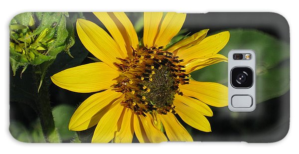 Wild Sunflower Galaxy Case
