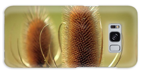 Wild Teasel Galaxy Case by Bruce Patrick Smith