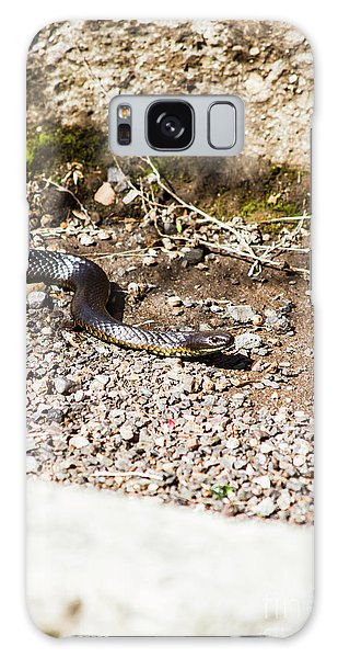 Ominous Galaxy Case - Wild Tiger Snake by Jorgo Photography - Wall Art Gallery