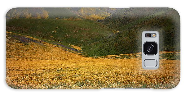 Wildflower Field Up In The Temblor Range At Carrizo Plain National Monument Galaxy Case