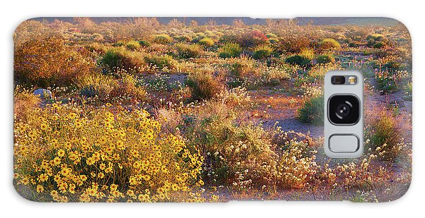 Galaxy Case featuring the photograph Wildflower Meadow At Joshua Tree National Park by Ram Vasudev