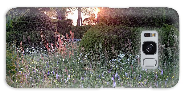 Wildflower Meadow At Sunset, Great Dixter Galaxy Case