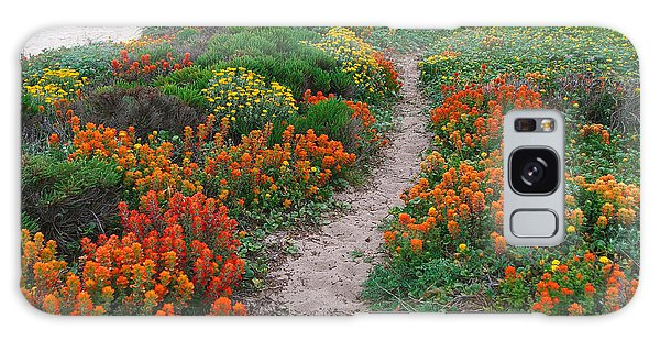 Wildflower Path At Ribera Beach Galaxy Case