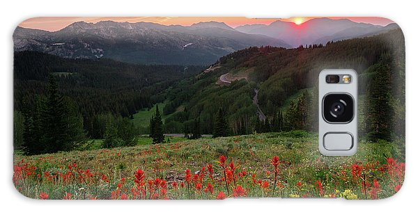 Wildflowers At Gaurdsmans Pass Galaxy Case