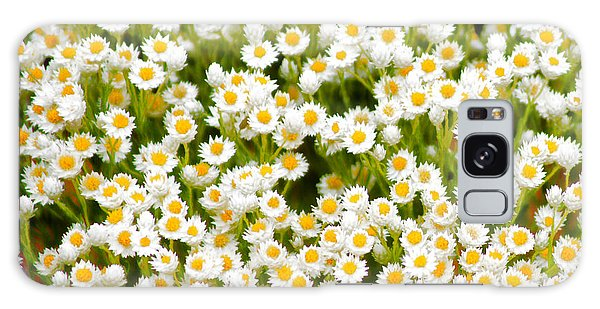 Galaxy Case - Wildflowers by Holly Kempe