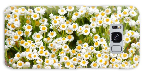 Wildflowers Galaxy Case by Holly Kempe