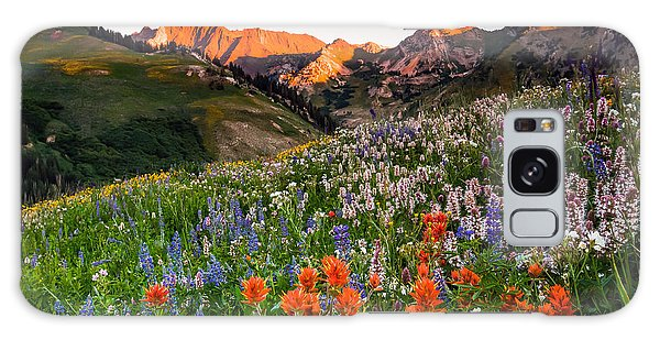 Wildflowers In Albion Basin. Galaxy Case
