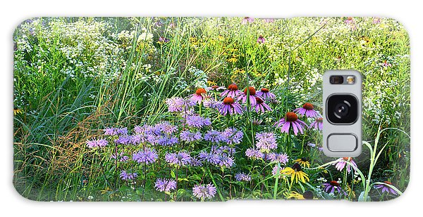 Wildflowers In Moraine Hills State Park Galaxy Case