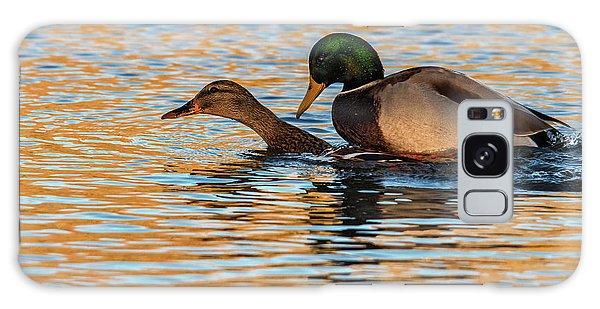 Wildlife Love Ducks  Galaxy Case