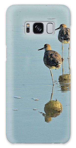 Willets On Jekyll Galaxy Case by Bruce Gourley