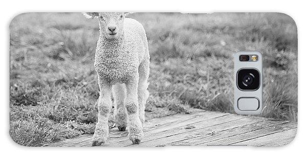 Williamsburg Lamb Galaxy Case