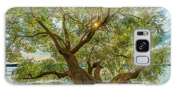 Willow Tree - Lake Geneva Wisconsin Galaxy Case