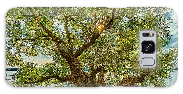 Willow Tree - Lake Geneva Wisconsin Galaxy Case