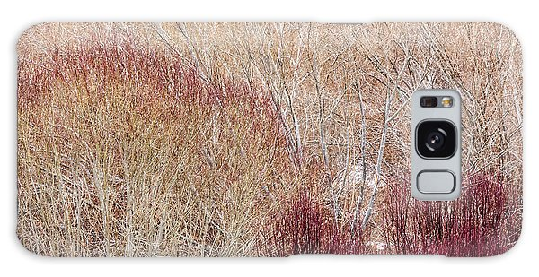 Willows In Winter Galaxy Case
