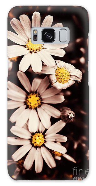 Petal Galaxy Case - Wilting And Blooming Floral Daisies by Jorgo Photography - Wall Art Gallery